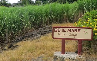 belle-mare