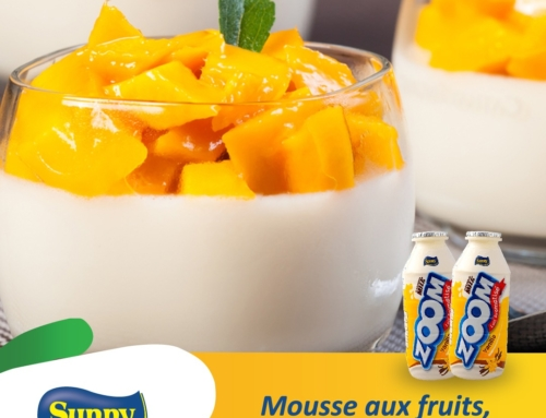 Recette :  Mousse aux fruits